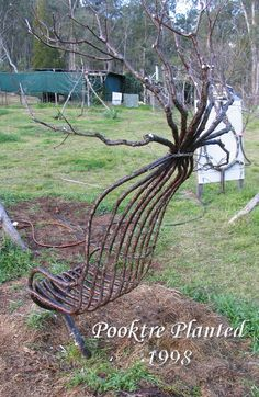 Living Tree Chair  #garden chair