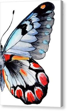 Butterfly Wing Watercolor Painting - Canvas Print Bring your artwork to life with the texture and depth of a stretched canvas print. Cute Canvas Paintings, Small Canvas Art, Painting Canvas, Simple Watercolor Paintings, Painting Metal, Picasso Paintings, Galaxy Painting, Watercolor Canvas, Canvas Canvas