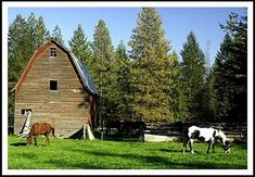 Image result for Montana Horse Barn