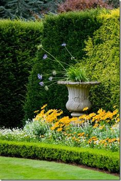 Beautiful colors and garden focus . . .