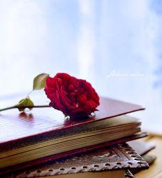 Romance Novel. by andokadesbois.deviantart.com on @deviantART