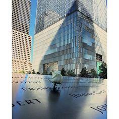 maryuyo   #groundzeromemorial #sightseeing #nyc #maiorviagem