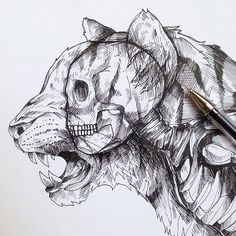 Awesome drawings by Alfred Basha.