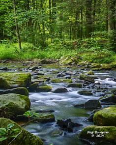 The Honey River flows through Reeds Gap State Park in the mountains of Pennsylvania.