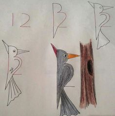 12 becomes a woodpecker