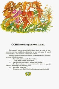 Elena Boariu - Craiasa de borangic Fantasy, Illustration, Inspiration, Biblical Inspiration, Imagination, Illustrations, Fantasy Books, Inhalation