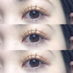 Types Of Eyelash Extensions, Asian Makeup Looks, Ulzzang Makeup, Kawaii Makeup, Asian Eyes, Beauty Shots, Skin Firming, Perfect Skin, Pretty Eyes