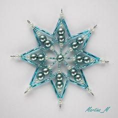 Vánoční hvězda 2014_39