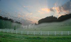 horse farms in kentucky   Lexington Kentucky Horse Farms For Sale   Horsesplanet.com