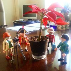 Oh Tannenbaum, Oh Tannenbaum #Sevilla #Andalucia #christmastree #christmas #Playmobil