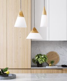 Odense Large Coolie Pendant in Ash/Frosted Glass Beacon