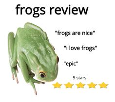 Sapo Frog, Fb Memes, Funny Memes, Sapo Meme, Pet Frogs, Haha, Frog Pictures, Animal Pictures, Frog Art