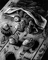 Michael McCurdy. (wood engraving)