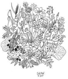 fleursbig copie