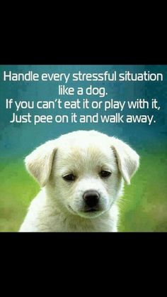 How to handle life!