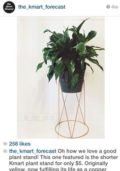 Kmart plant stand (painted copper) $5