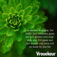 Wise Quotes, Qoutes, Inspiring Quotes About Life, Inspirational Quotes, Bible Journaling For Beginners, Afrikaanse Quotes, Woman Quotes, Spirituality, Center Stage
