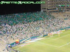 Fecha 19. Deportivo Cali 1-4 Once Caldas - 6 de Noviembre - DSC01461 - Frente Radical Verdiblanco Ultras - www.FrenteRadical.com
