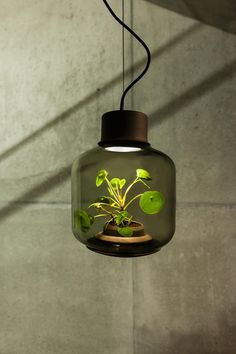 Mygdal Pflanzenlampen