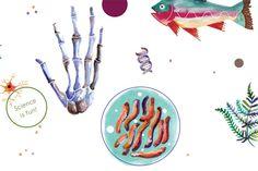 Actualité / La science à la portée des enfants / étapes: design & culture visuelle