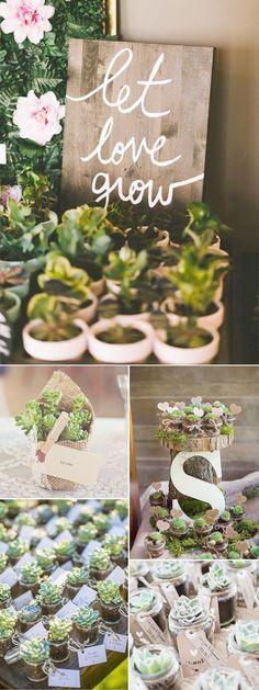 DIY succulent wedding favor ideas