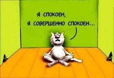 Мудрец сказал: «Когда Вам озвучивают своё мнение о Вас, оставайтесь спокойными в любом случае - хвалят Вас или оскорбляют - Ваш собеседник озвучивает состояние своего ума».