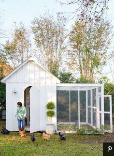 My favorite coop. Other side mesh Dream chicken coop