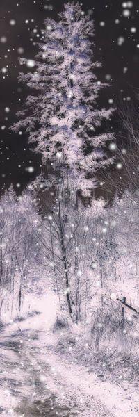 'forest winter - Waldwinter' von Chris Berger bei artflakes.com als Poster oder Kunstdruck $17.08