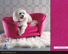 Tapiza el mueble de tu mascota para que combine con la decoración de tu hogar.