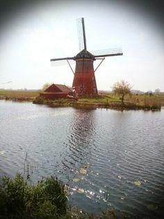 Classic scene in the  Netherland