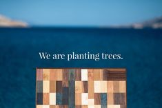 Time has come, we are planting trees this week.  Working with wood as an ancient and natural material for mankind has been taken for granted. That is one of the reasons we have decided  to give back from what we have been given and set a goal to keep our shipping and production sustainable.  If it comes to working with wood: -we are planting trees twice a year to compensate our shipping carbon emissions. -for woodturning we use local diseased trees that have to be cut down for safety reasons. -f Taken For Granted, Woodturning, Trees To Plant, Natural Materials, Planting, Sustainability, Goal, It Works, Safety