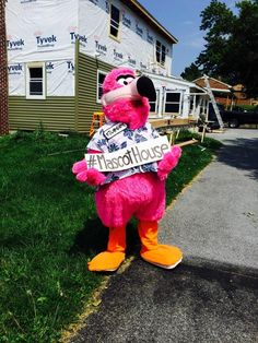 Filbert shows off our new siding color in late August. Siding Colors, Orlando Vacation, Mascot Costumes, House, Haus, Homes