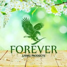 Forever Living Products Pvt Ltd Its Not Just A Name Lifetime Opportunity