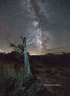 Abiquiu Lake and Milkyway