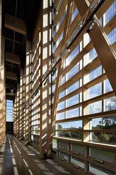 Wood construction detail of MOTAT Aviation Display Hall in New Zealand by Studio Pacific Architecture