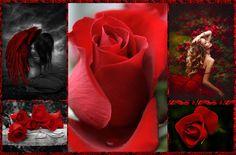 """""""Non é necessario lasciare andare tutte le paure prima di poter abbracciare l'amore. Potete raccogliere le vostre paure tra le vostre braccia e portarle con voi nell'amore, perché una volta che entrate dentro l'amore, la paura si rivela l'illusione che é sempre stata, l'amore é tutto ció che resta."""""""