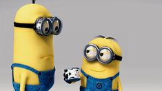 Minions | Minions HD Wallpapers | Cartoon Wallpaper | kids | Mobile Wallpapers | iphone Wallpapers Cute Disney Wallpaper, Wallpaper Iphone Cute, Of Wallpaper, Cartoon Wallpaper, Cute Wallpapers, Minion Wallpaper, Photo Wallpaper, Iphone Wallpapers, Desktop