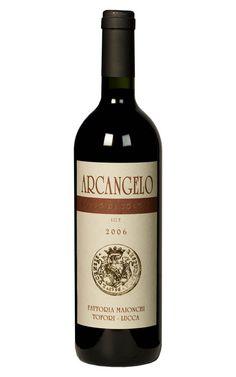 Arcangelo DOC (Vineyards Fattoria Maionchi)