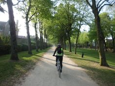 Avenue de la grange Montgeron