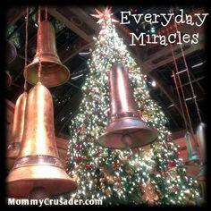 Everyday Miracles | MommyCrusader.com