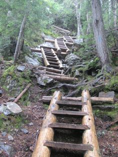 Mt. Willey, ladder section, Crawford Notch, NH -  was named after the family Willey, who in August 1826 were killed in a landslide.