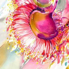 Watercolor Plants, Watercolor Artwork, Watercolour, Floral Illustrations, Illustration Art, Natalie Martin, Australian Native Flowers, Hummingbird Art, Print Release