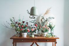 Projekt Blume Plants, Projects, Flowers, Plant, Planets