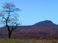 Buffalo Mountain, Floyd Co., Virginia...beautiful place. Rode my horse all the way to the top...Breathtaking!