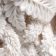 patternprints journal: VERY TANGLED LEAVES PATTERNS IN HITOMI HOSONO CERAMICS