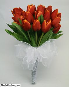 I want red flowers but roses are a bit overdone. I like the tulips :)