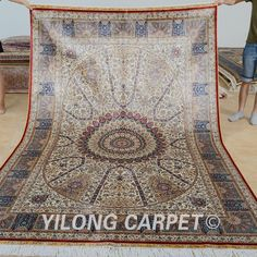 Yilong 6'x9' Persian Silk Rugs Hand Knotted Carpets Traditional Hand Made 0739
