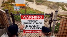 German woman dies in Maui days after being bit by a shark. It has been 9 years since someone has died in Hawaii from a shark attack.
