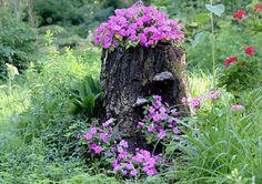 木の切り株ガーデン