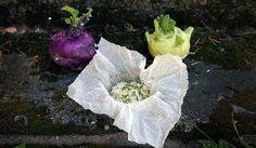 Tarjoa höyrytetty kyssäkaali rennosti suoraan paperinyytistä. #kyssäkaali #kaali #maajakotitalousnaiset #ruokaneuvot Cabbage, Vegetables, Food, Veggies, Vegetable Recipes, Meals, Cabbages, Yemek, Collard Greens